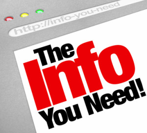 The Info You Need Website Screen Computer Internet Browser